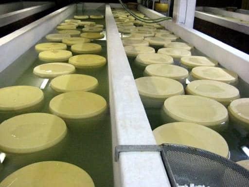 parmigiano-reggiano-cheese-float