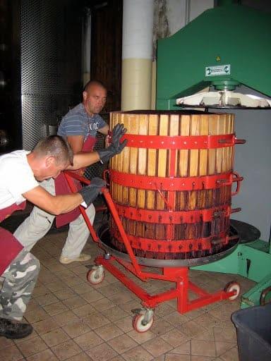 piedmont-winemaking