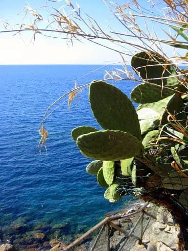 riomaggiore-ligurian-sea