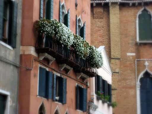 venice-window-garden