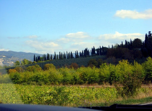 italy-from-the-car-5