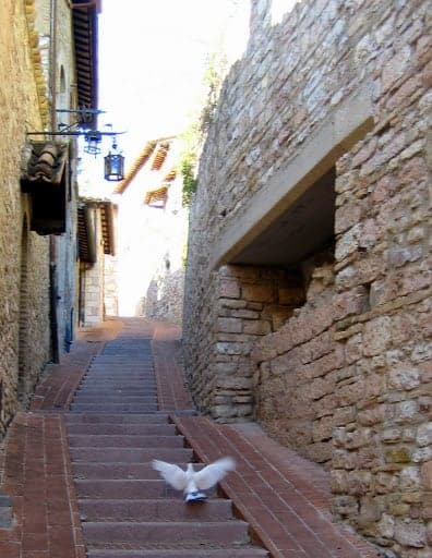 walking-around-assisi