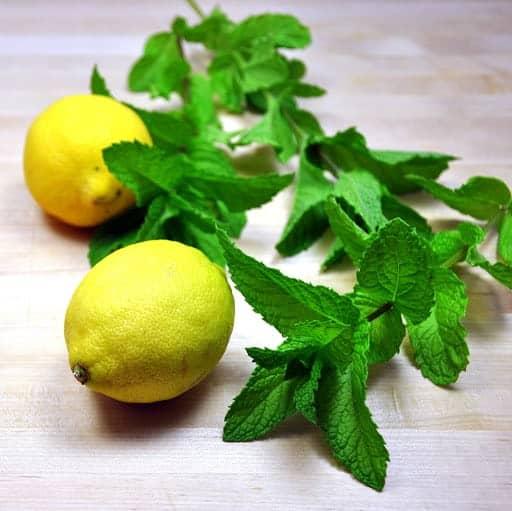 Lemons and Fresh Mint