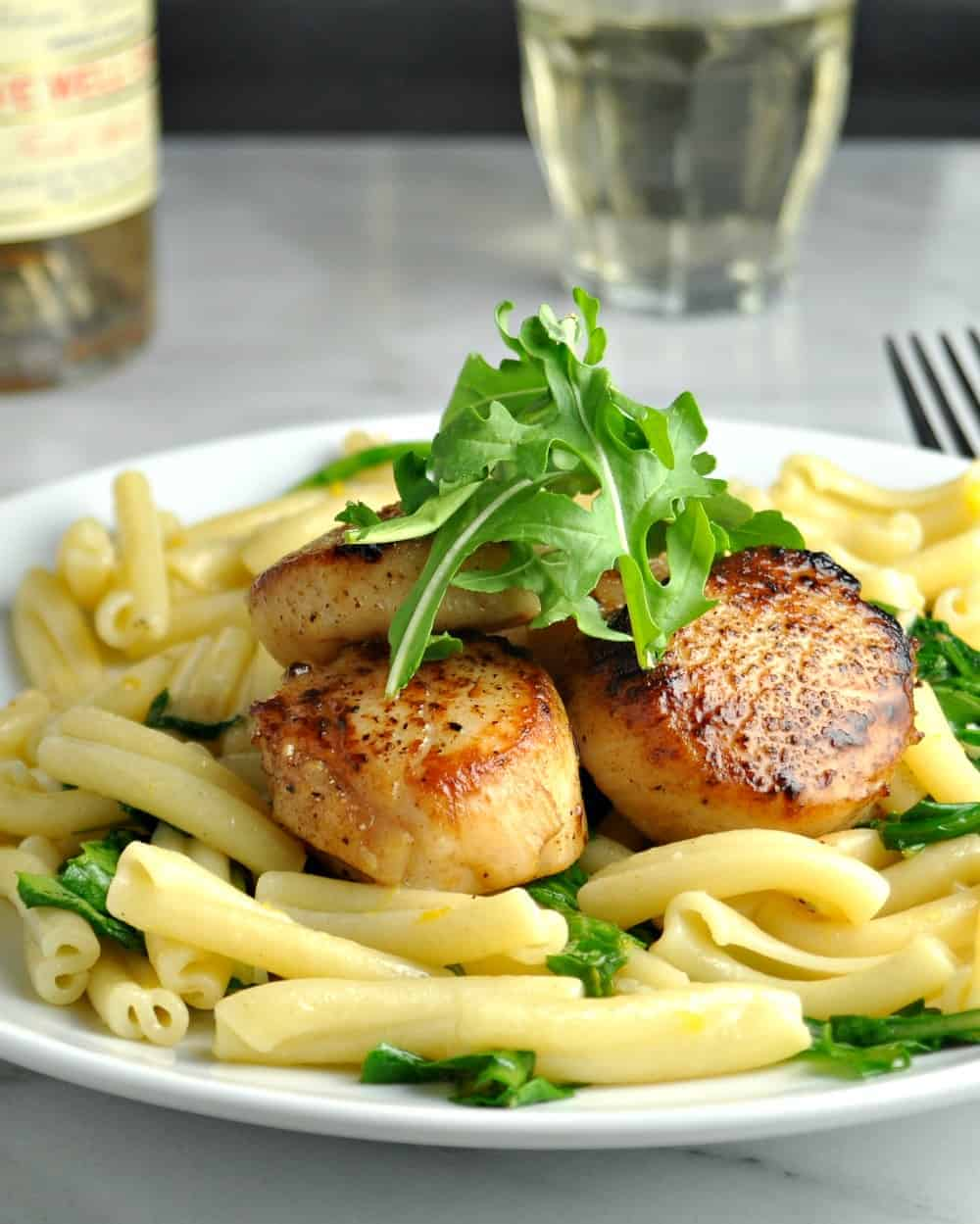 Scallops with Pasta served on a white plate