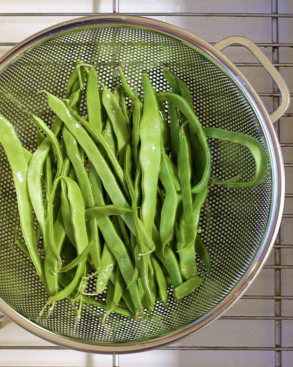 Fresh Romano Beans