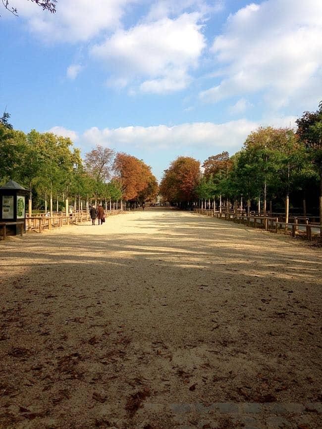Luxembourg Garden 6