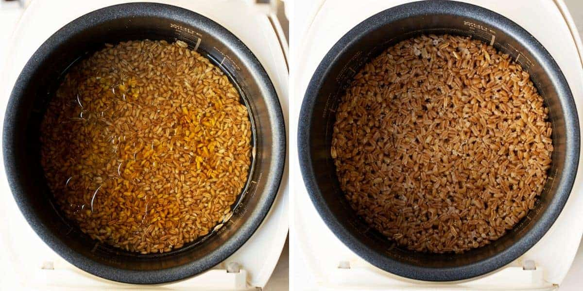 cooking farro in a rice cooker