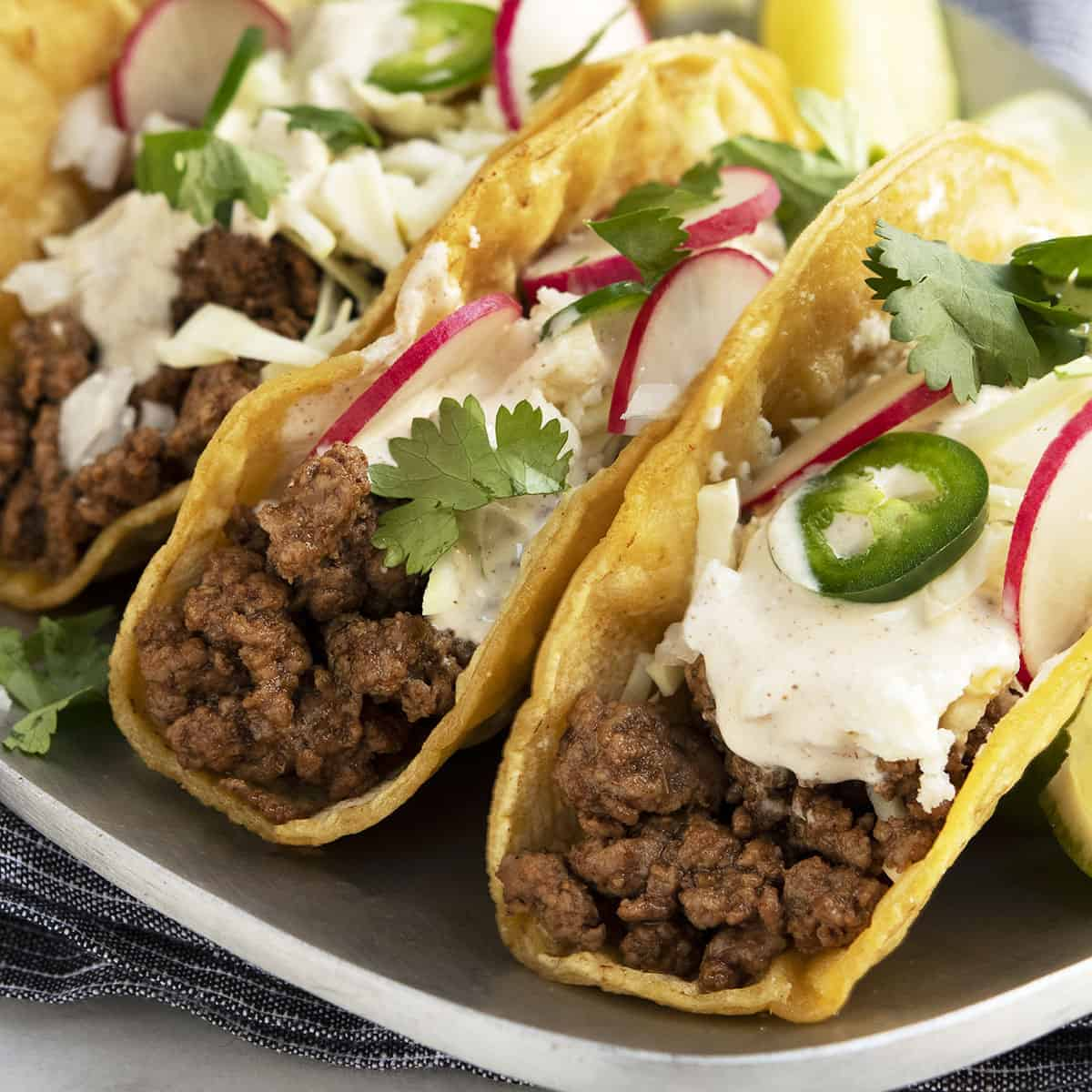 Lamb Tacos served on a stainless steel platter